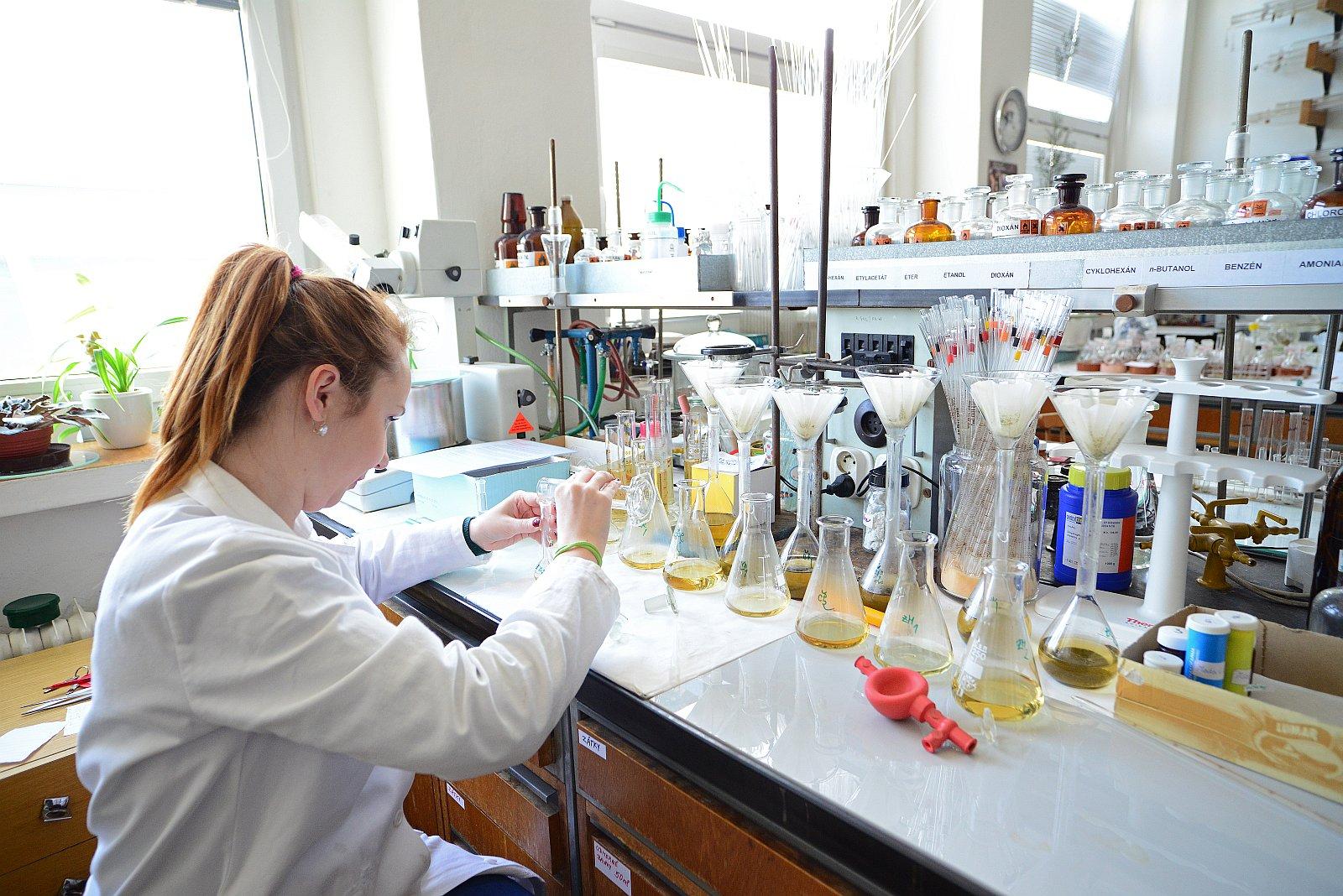 Online Diploma Programs in Pharmacy